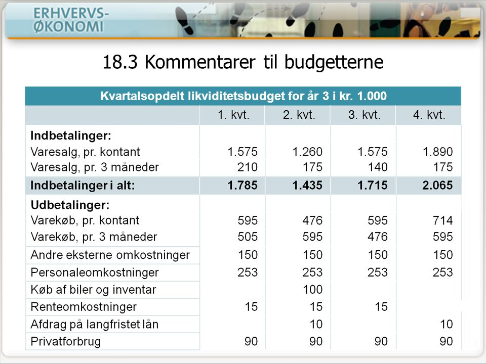 18.3 Kommentarer til budgetterne