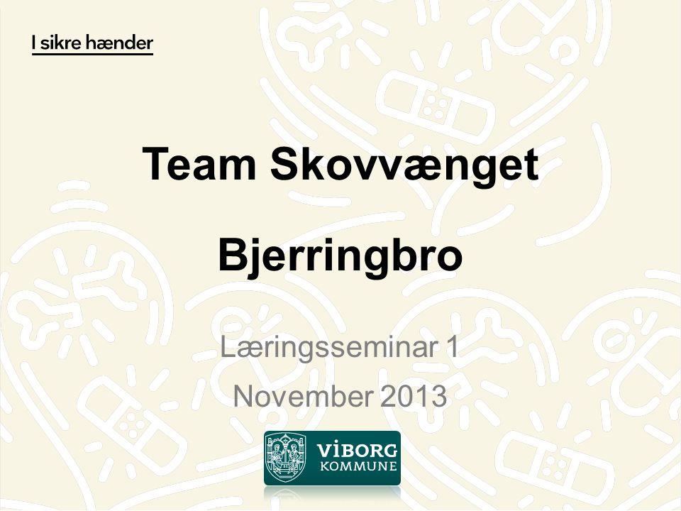 Team Skovvænget Bjerringbro