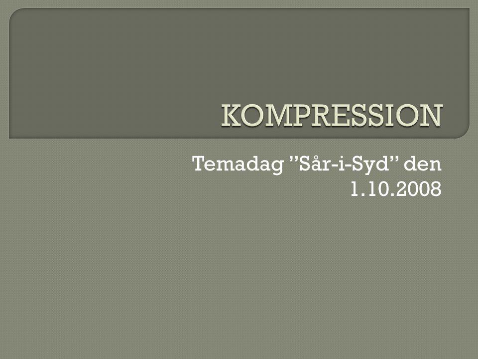 Temadag Sår-i-Syd den 1.10.2008