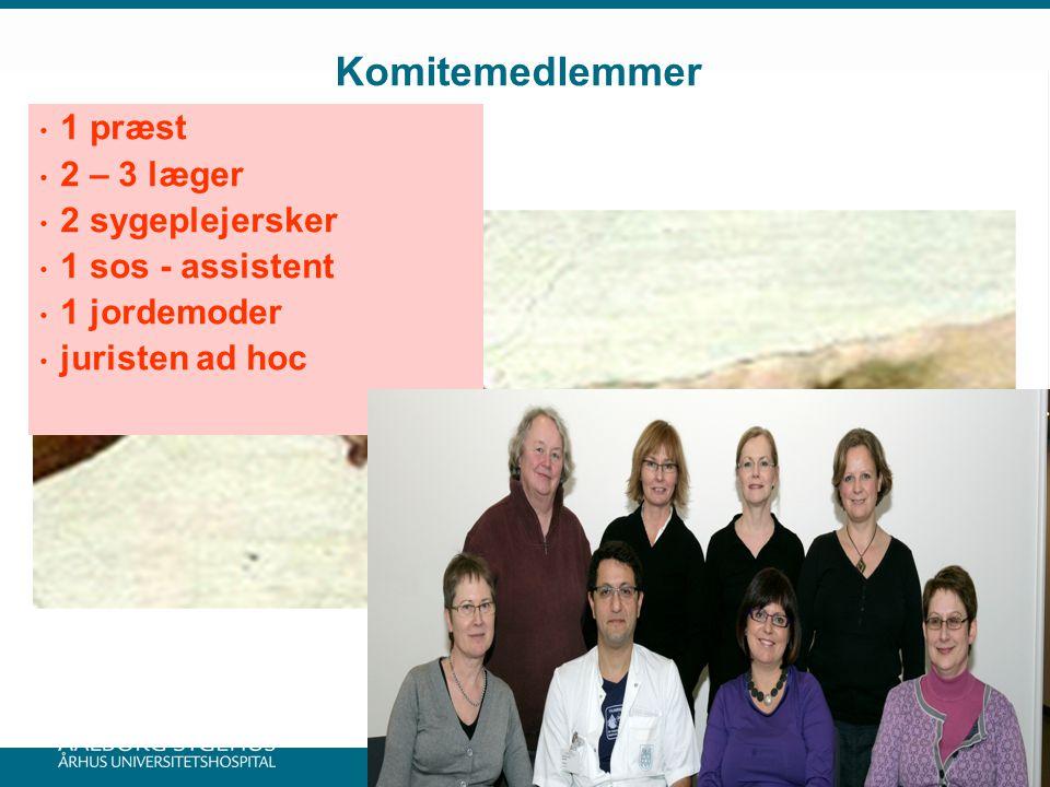 Komitemedlemmer 1 præst 2 – 3 læger 2 sygeplejersker 1 sos - assistent