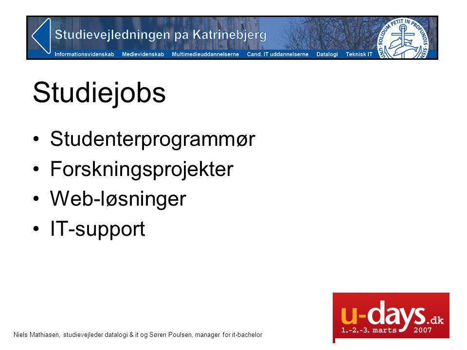 Studiejobs Studenterprogrammør Forskningsprojekter Web-løsninger