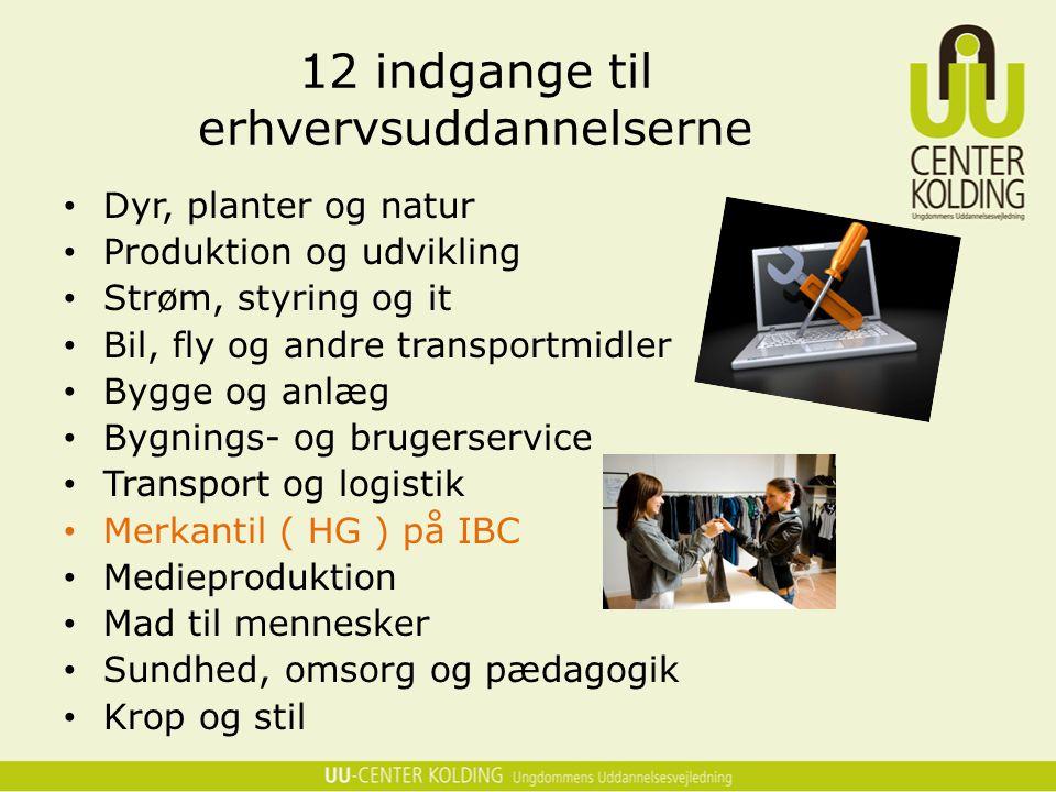 12 indgange til erhvervsuddannelserne
