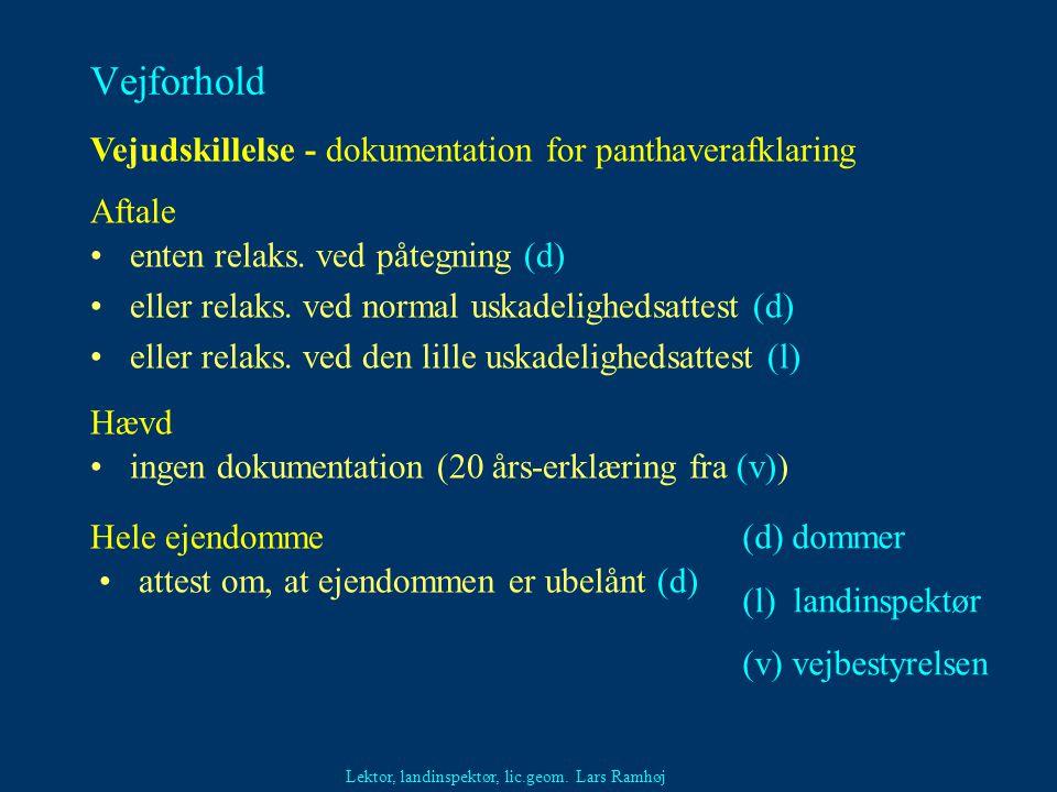 Vejforhold Vejudskillelse - dokumentation for panthaverafklaring