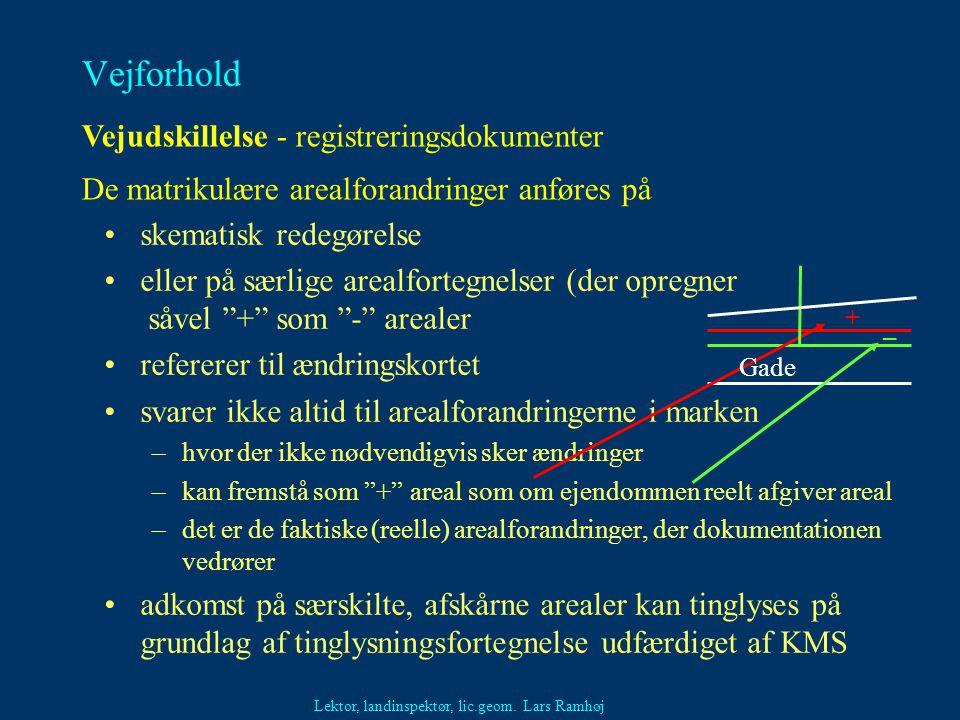 Vejforhold Vejudskillelse - registreringsdokumenter