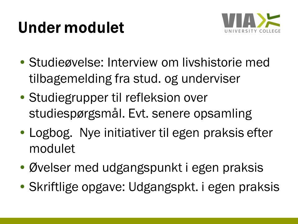 Under modulet Studieøvelse: Interview om livshistorie med tilbagemelding fra stud. og underviser.