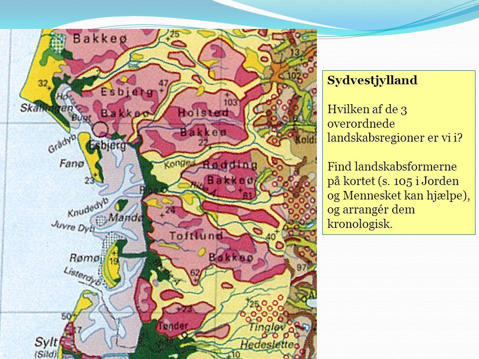 Sydvestjylland Hvilken af de 3 overordnede landskabsregioner er vi i