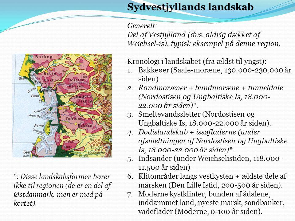 Sydvestjyllands landskab