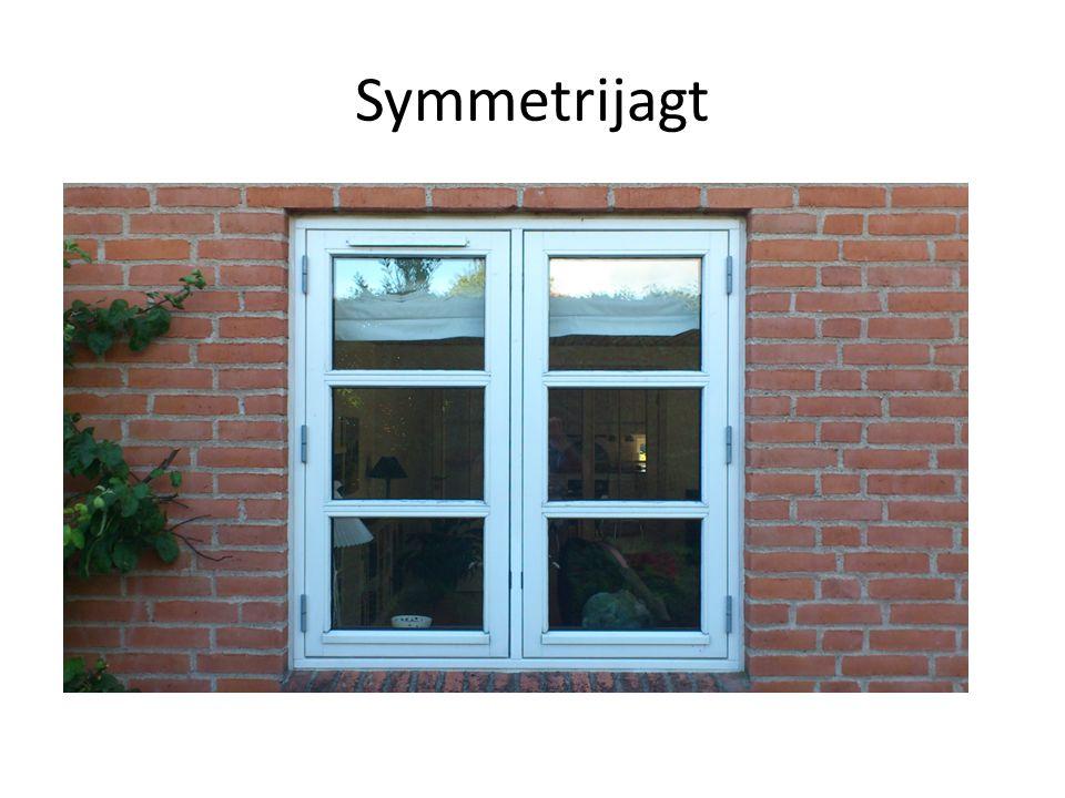 Symmetrijagt