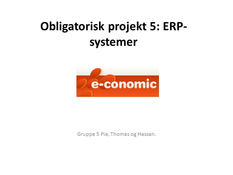 Obligatorisk projekt 5: ERP-systemer