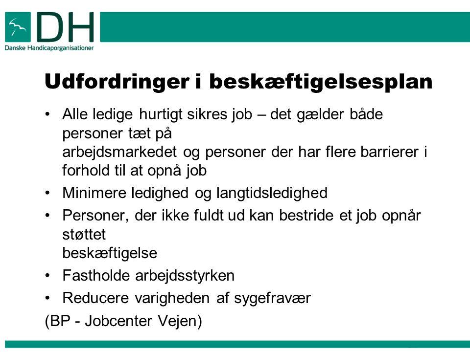 Udfordringer i beskæftigelsesplan