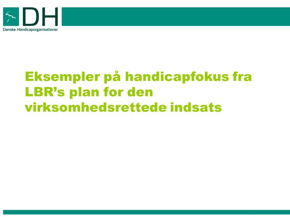 Eksempler på handicapfokus fra LBR's plan for den virksomhedsrettede indsats