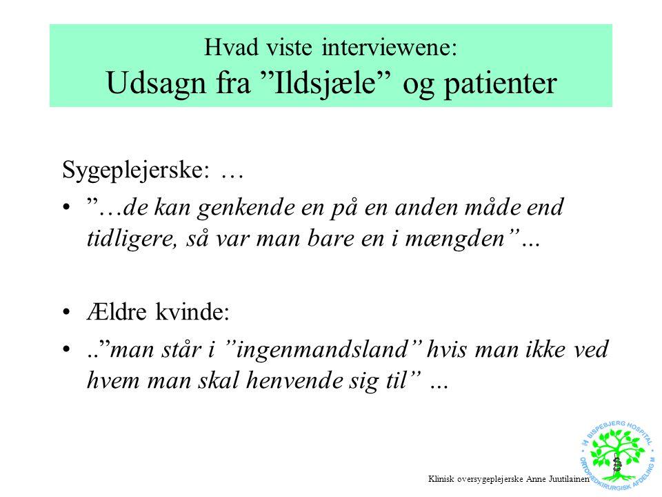 Hvad viste interviewene: Udsagn fra Ildsjæle og patienter