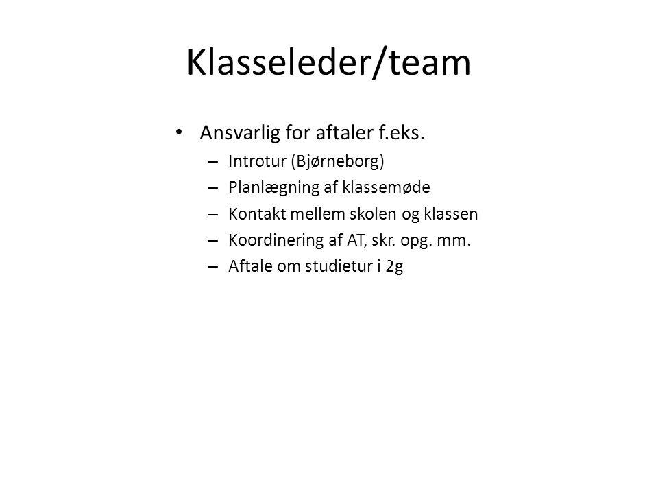 Klasseleder/team Ansvarlig for aftaler f.eks. Introtur (Bjørneborg)