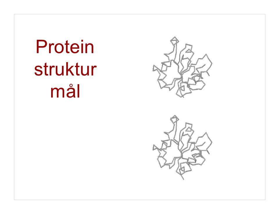 Protein struktur mål