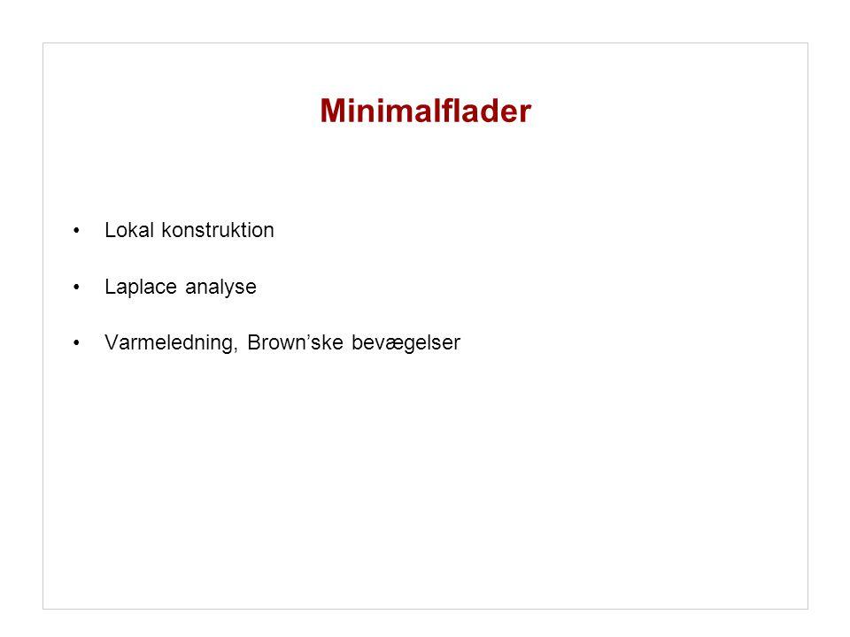 Minimalflader Lokal konstruktion Laplace analyse