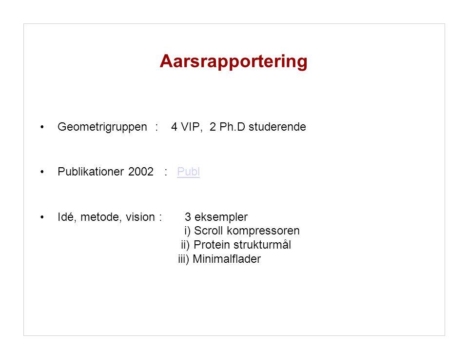 Aarsrapportering Geometrigruppen : 4 VIP, 2 Ph.D studerende