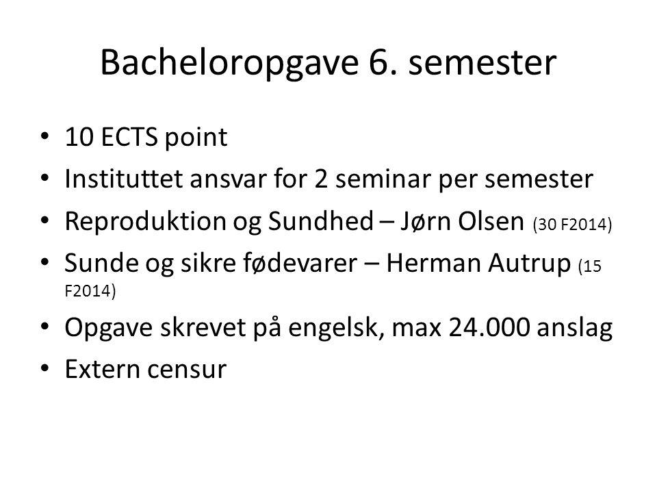 Bacheloropgave 6. semester