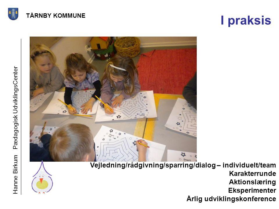 I praksis Vejledning/rådgivning/sparring/dialog – individuelt/team