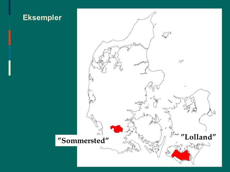 Eksempler Lolland Sommersted