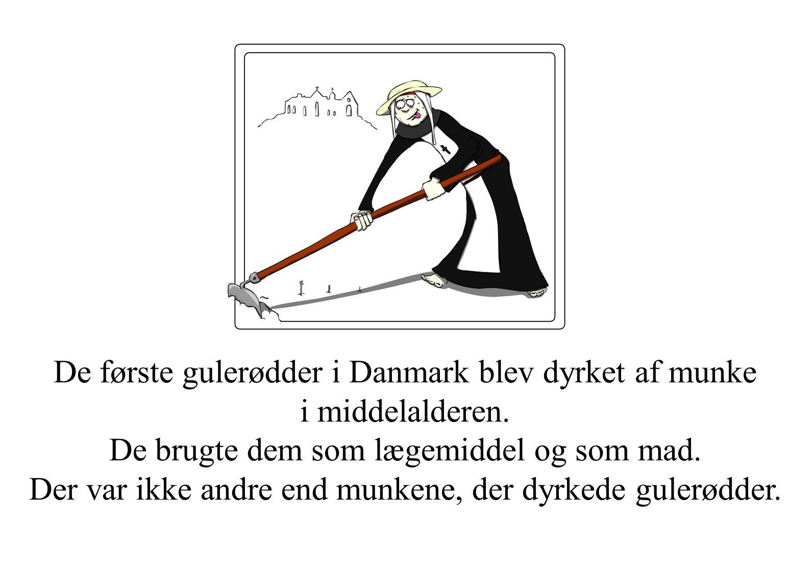 De første gulerødder i Danmark blev dyrket af munke i middelalderen