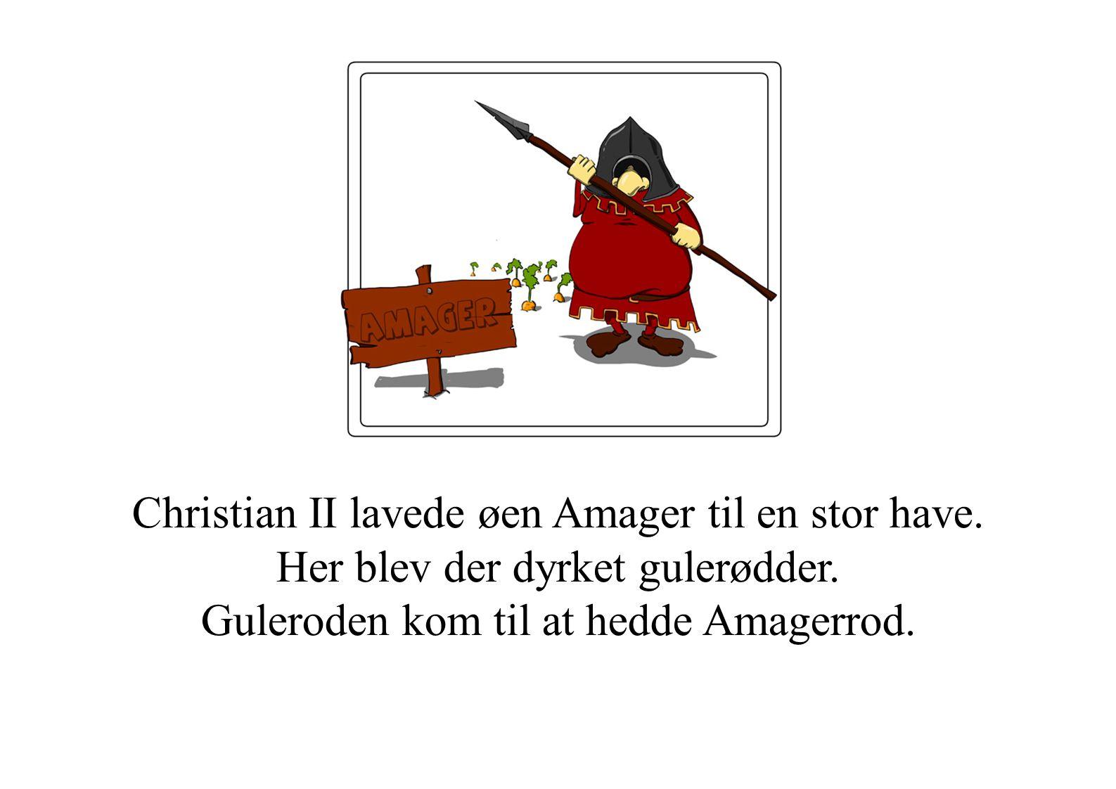 Christian II lavede øen Amager til en stor have
