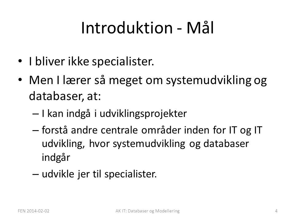 AK IT: Databaser og Modellering