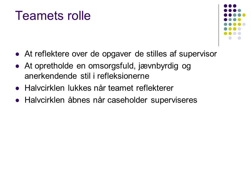 Teamets rolle At reflektere over de opgaver de stilles af supervisor