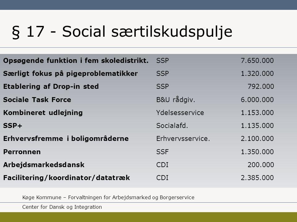 § 17 - Social særtilskudspulje