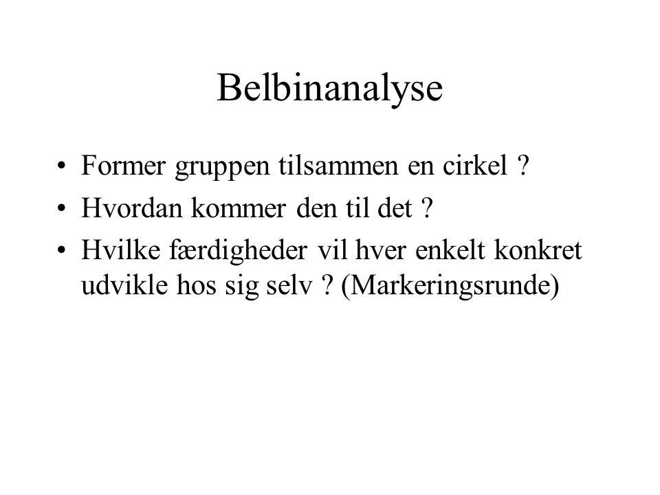 Belbinanalyse Former gruppen tilsammen en cirkel