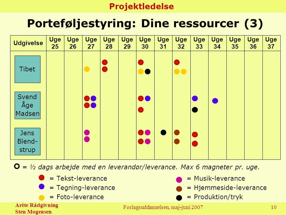 Porteføljestyring: Dine ressourcer (3)