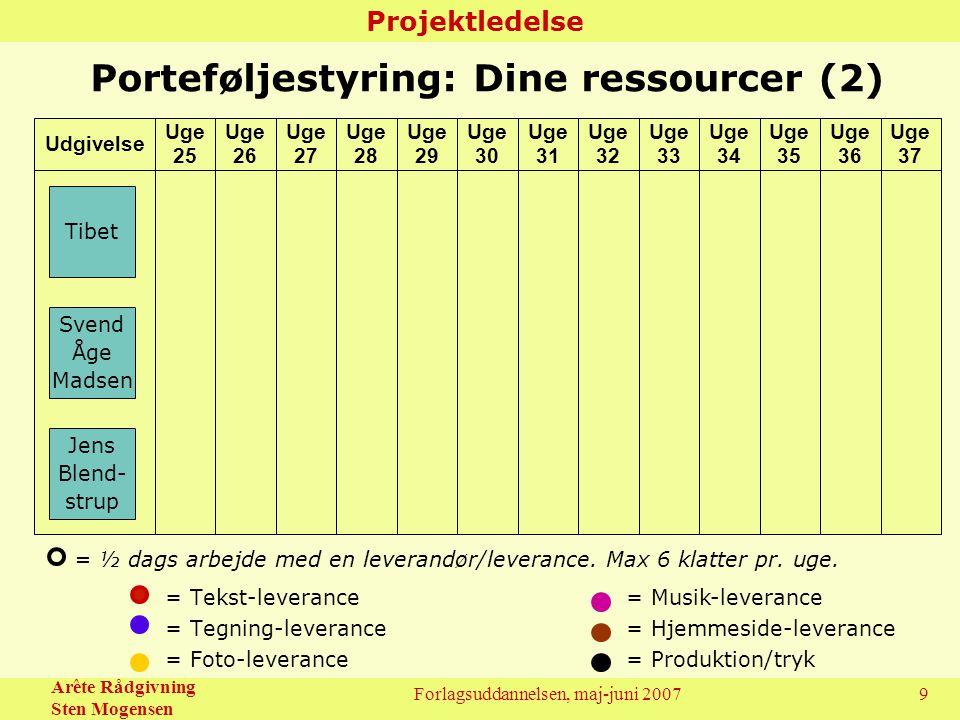 Porteføljestyring: Dine ressourcer (2)