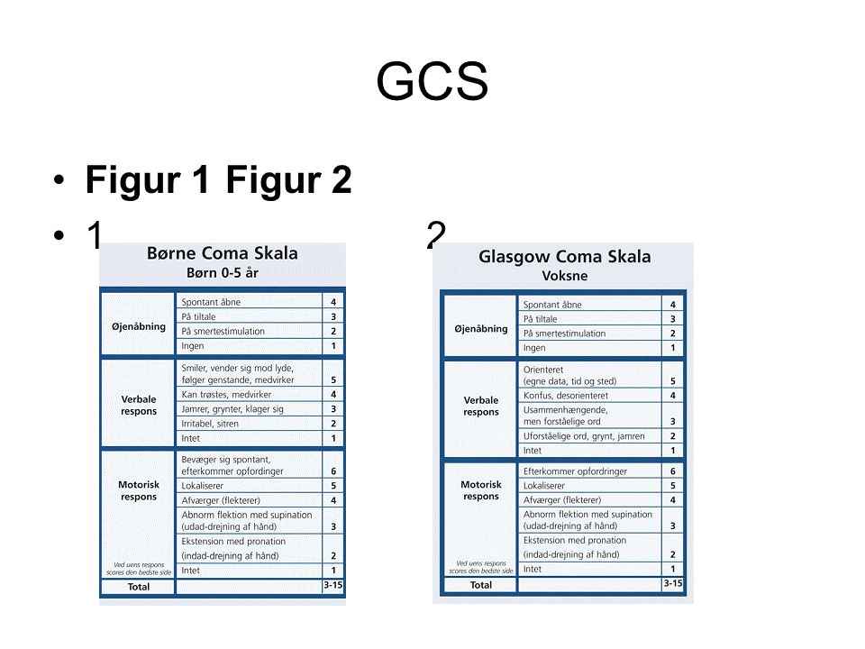 GCS Figur 1 Figur 2.