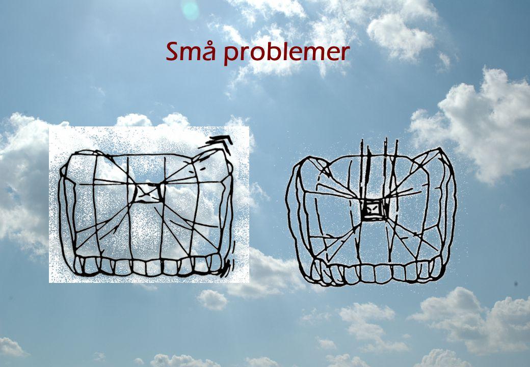 Små problemer