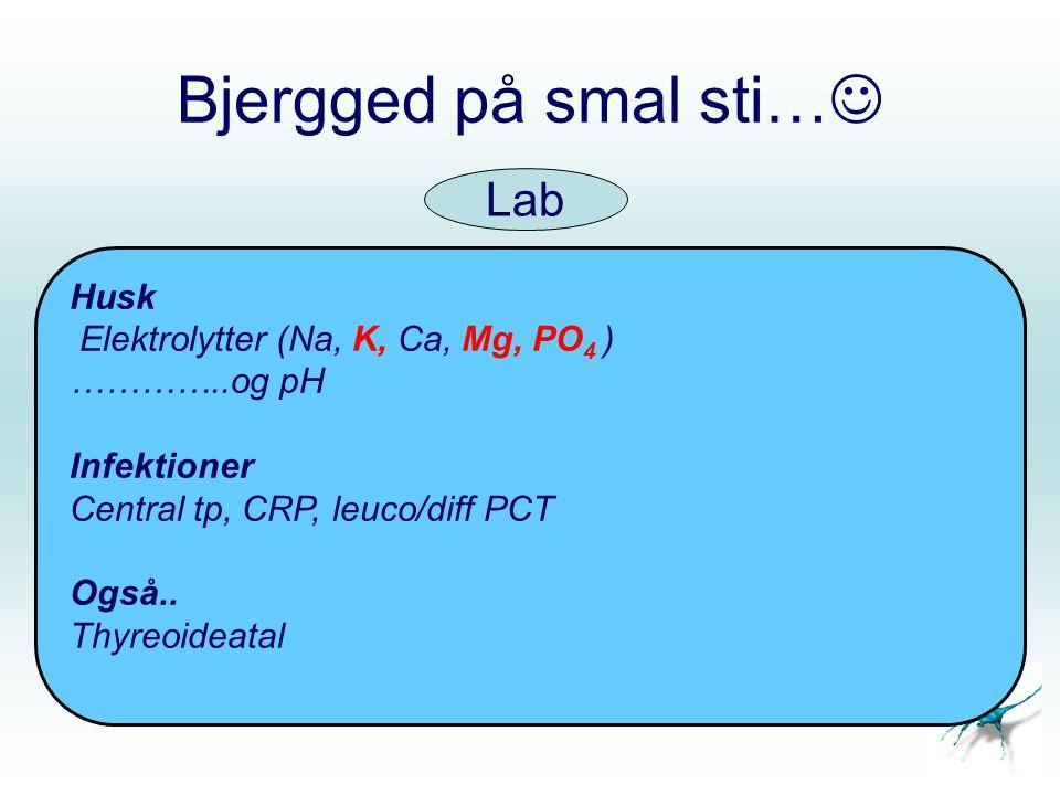 Bjergged på smal sti… Lab Husk Elektrolytter (Na, K, Ca, Mg, PO4 )
