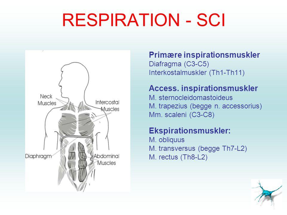 RESPIRATION - SCI Primære inspirationsmuskler