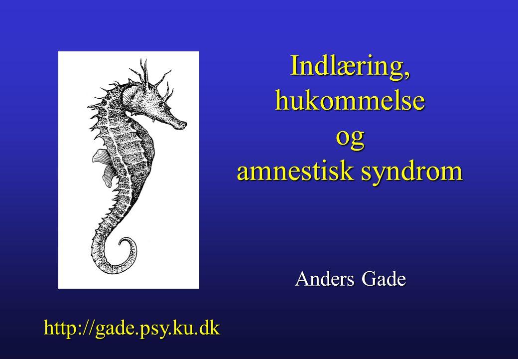 Indlæring, hukommelse og amnestisk syndrom Anders Gade
