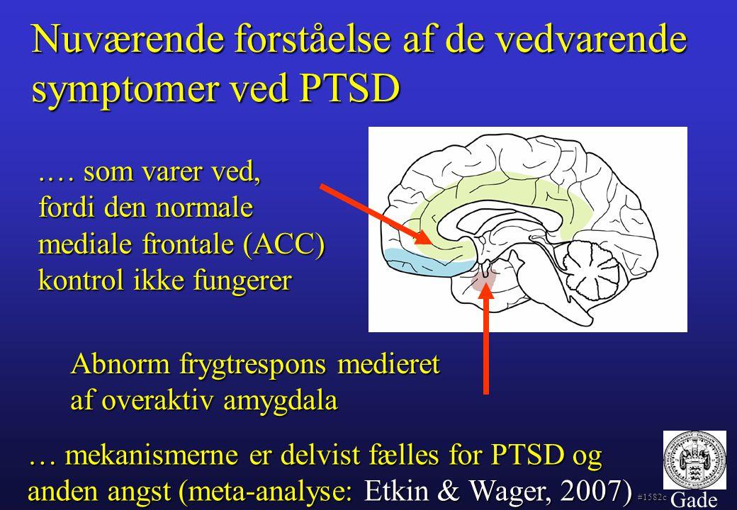 Nuværende forståelse af de vedvarende symptomer ved PTSD