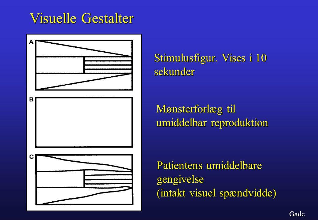 Visuelle Gestalter Stimulusfigur. Vises i 10 sekunder