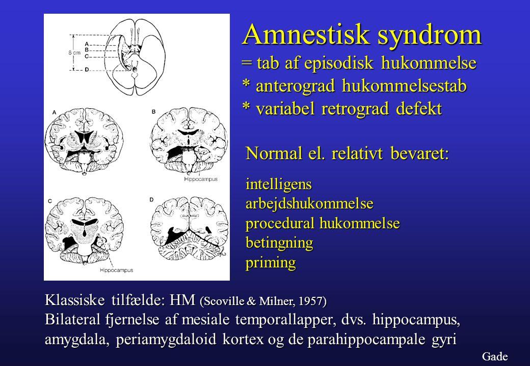 Amnestisk syndrom = tab af episodisk hukommelse
