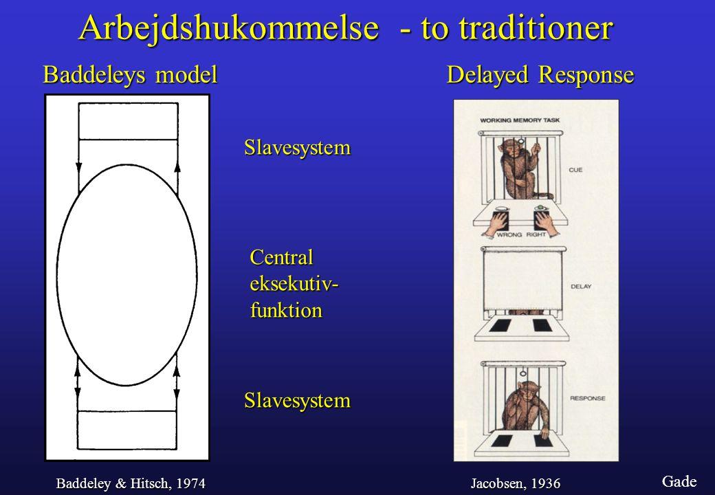Arbejdshukommelse - to traditioner