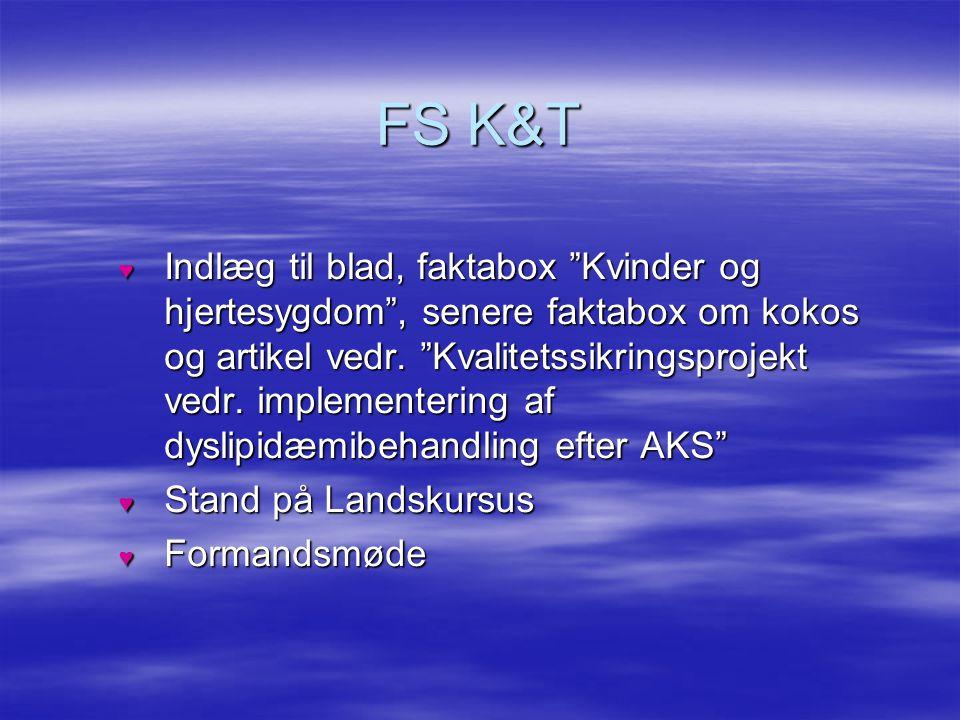 FS K&T