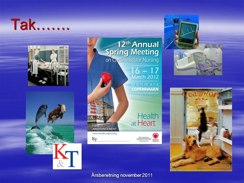 Årsberetning november 2011