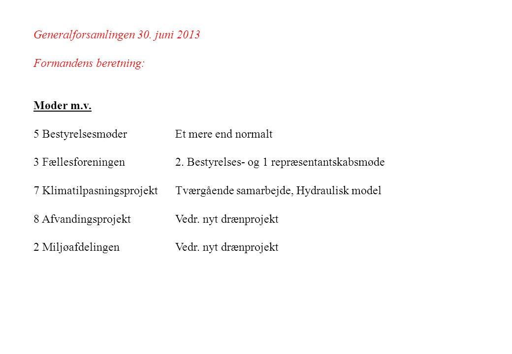 Generalforsamlingen 30. juni 2013