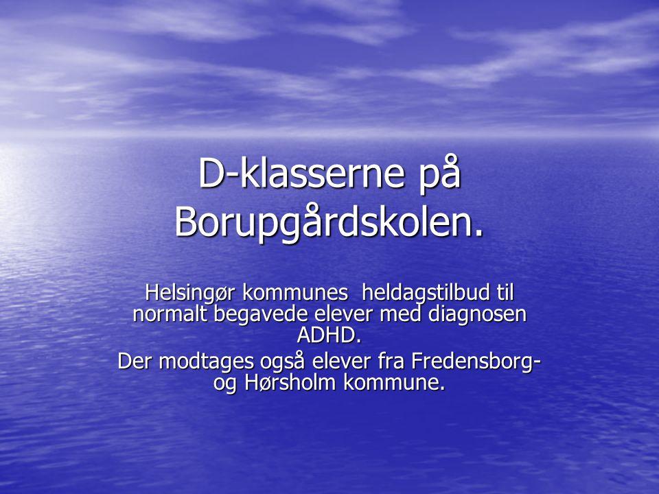 D-klasserne på Borupgårdskolen.