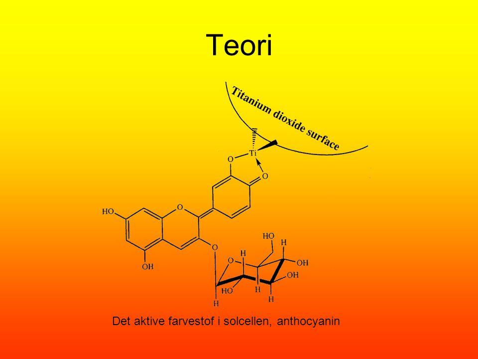Teori Det aktive farvestof i solcellen, anthocyanin