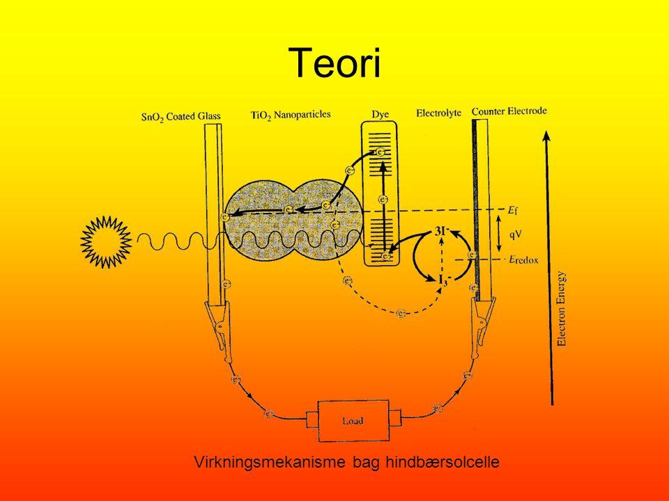 Teori Virkningsmekanisme bag hindbærsolcelle