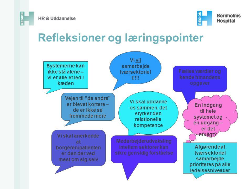 Refleksioner og læringspointer