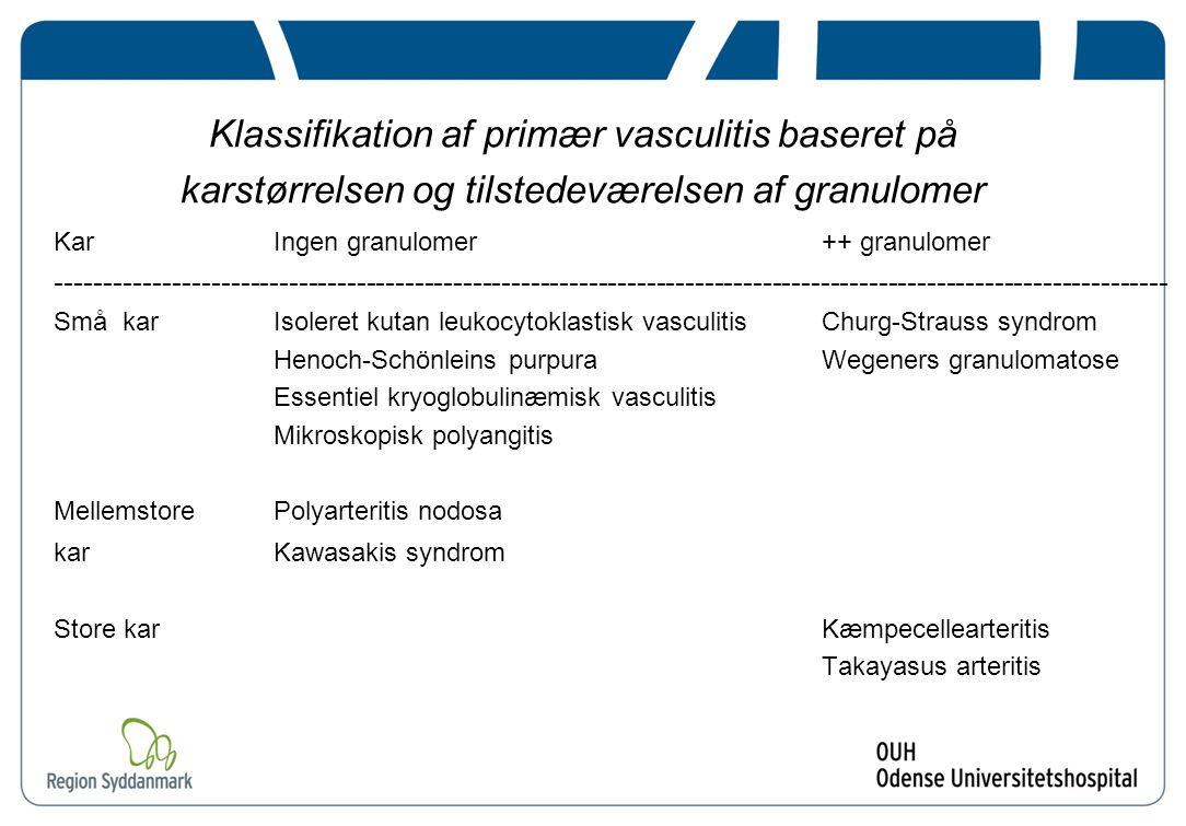 Klassifikation af primær vasculitis baseret på karstørrelsen og tilstedeværelsen af granulomer
