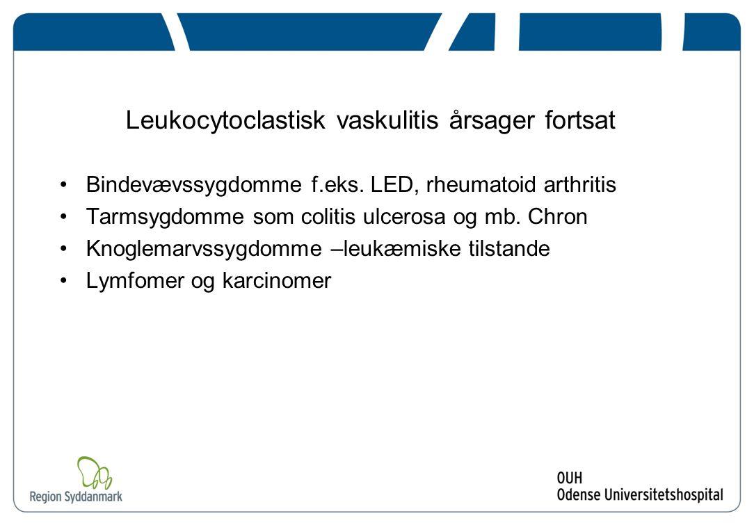 Leukocytoclastisk vaskulitis årsager fortsat