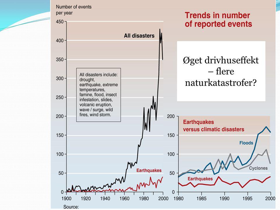 Øget drivhuseffekt – flere naturkatastrofer